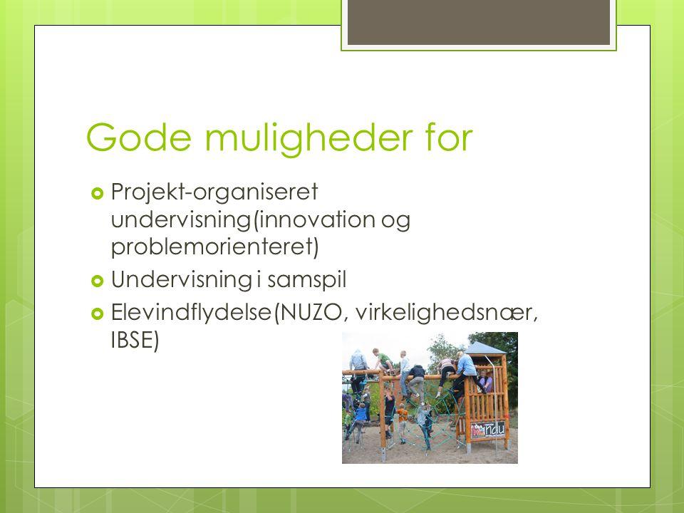 Gode muligheder for Projekt-organiseret undervisning(innovation og problemorienteret) Undervisning i samspil.