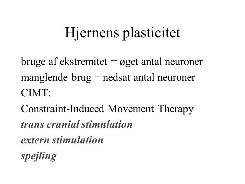 Hjernens plasticitet bruge af ekstremitet = øget antal neuroner