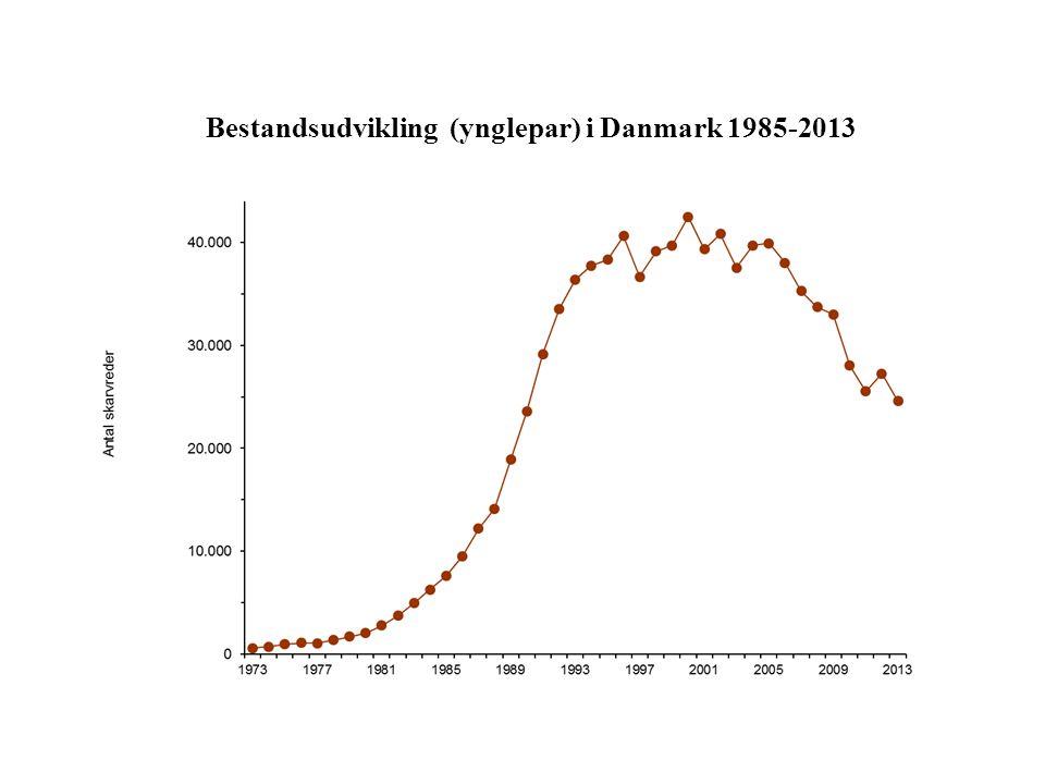 Bestandsudvikling (ynglepar) i Danmark 1985-2013