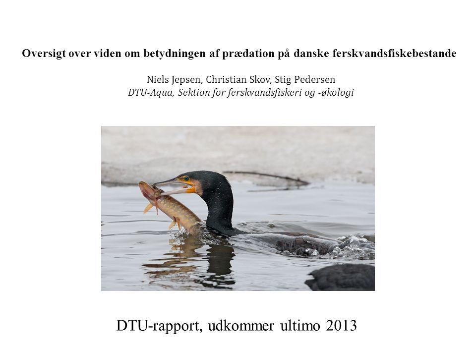 DTU-rapport, udkommer ultimo 2013