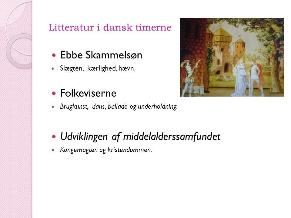 Litteratur i dansk timerne