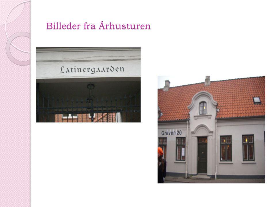 Billeder fra Århusturen
