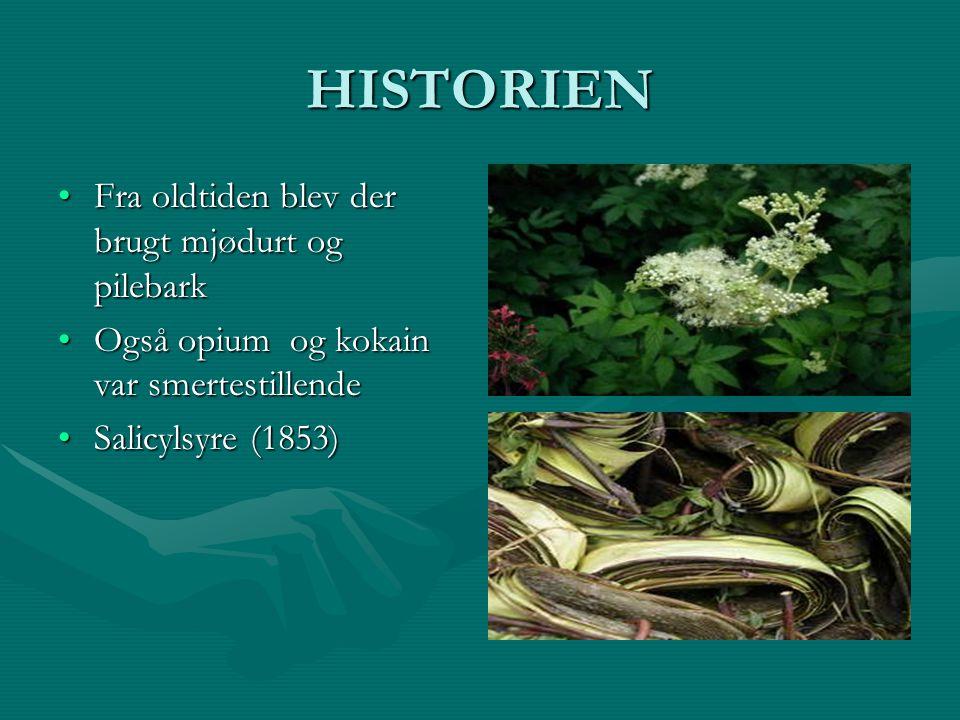 HISTORIEN Fra oldtiden blev der brugt mjødurt og pilebark