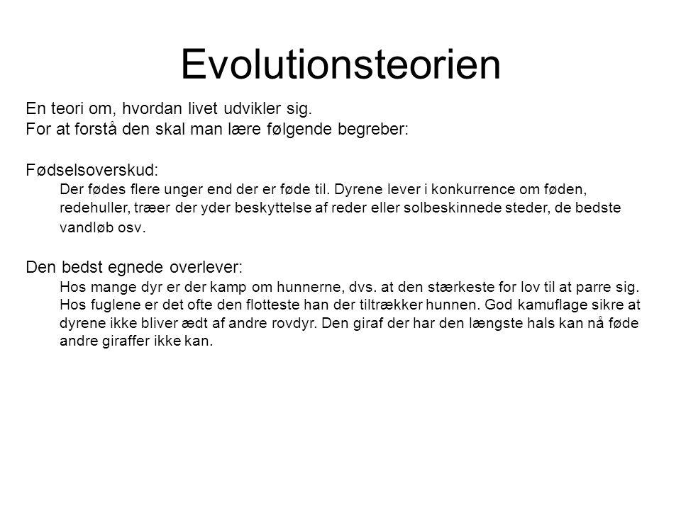 Evolutionsteorien En teori om, hvordan livet udvikler sig. For at forstå den skal man lære følgende begreber:
