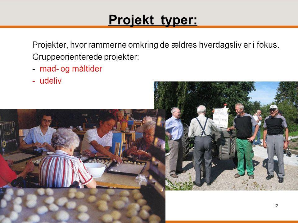 Projekt typer: Projekter, hvor rammerne omkring de ældres hverdagsliv er i fokus. Gruppeorienterede projekter: