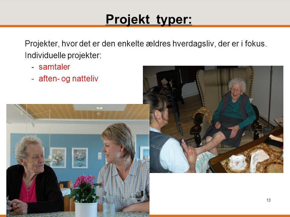 Projekt typer: Projekter, hvor det er den enkelte ældres hverdagsliv, der er i fokus. Individuelle projekter: