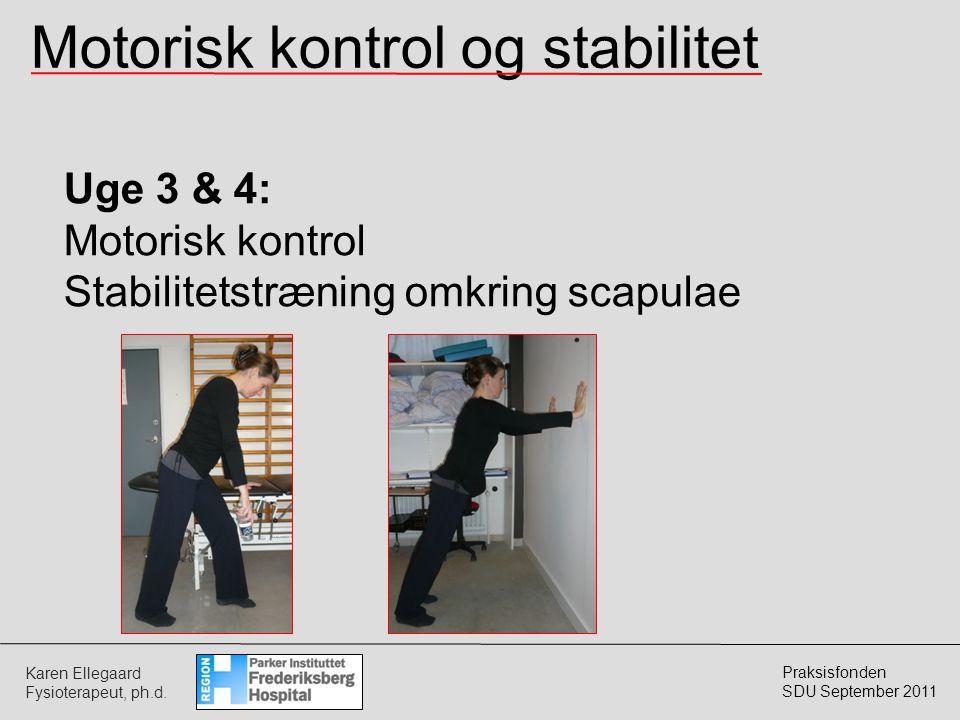 Motorisk kontrol og stabilitet