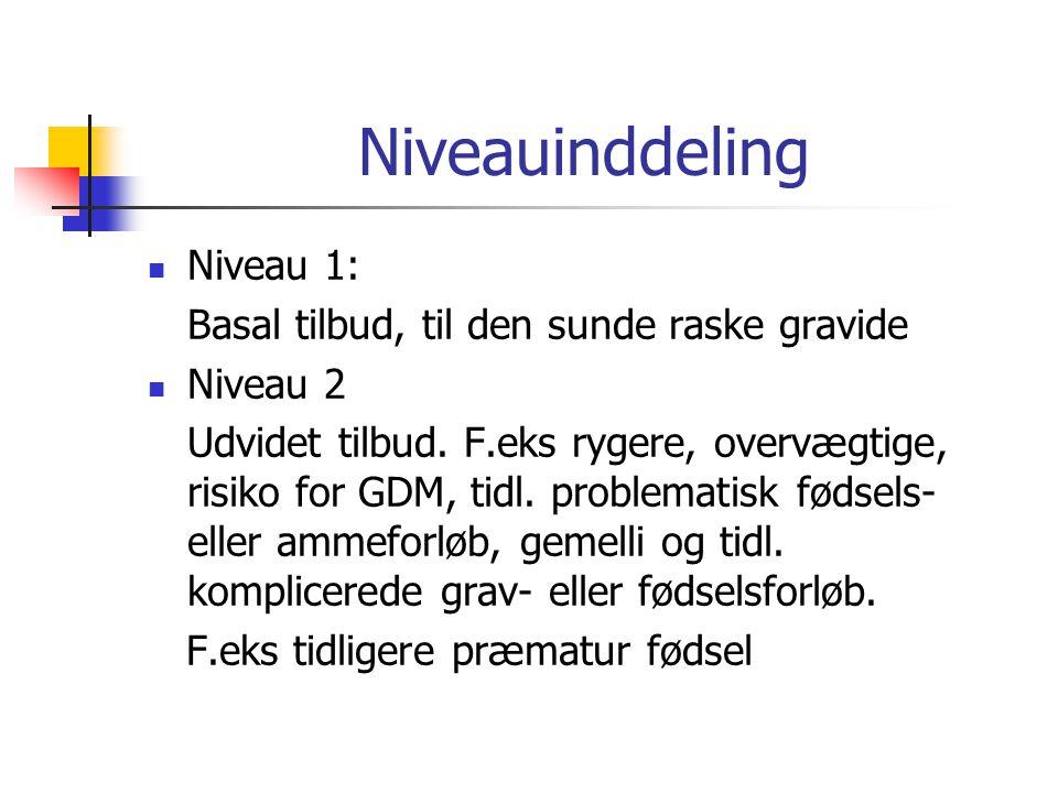 Niveauinddeling Niveau 1: Basal tilbud, til den sunde raske gravide