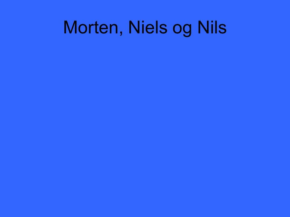 Morten, Niels og Nils