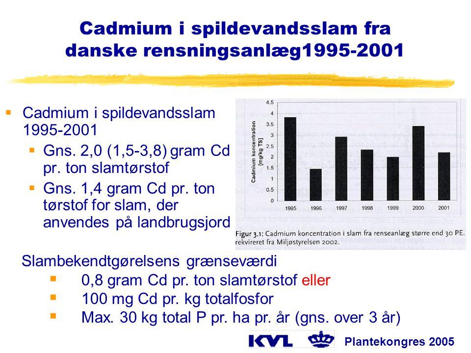 Cadmium i spildevandsslam fra danske rensningsanlæg1995-2001