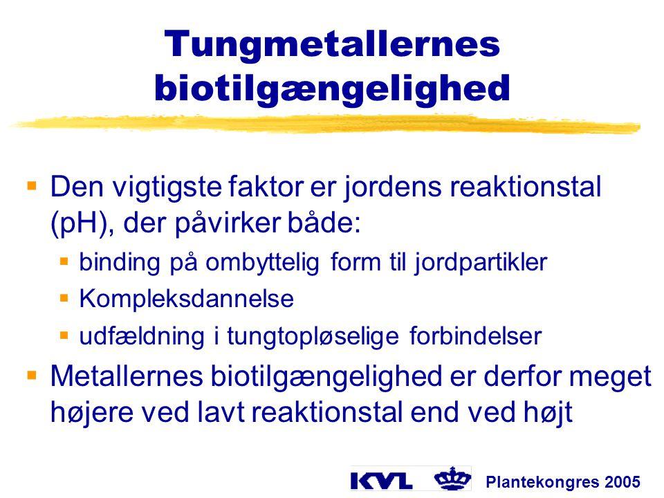 Tungmetallernes biotilgængelighed
