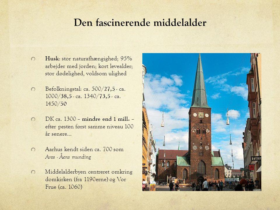 Den fascinerende middelalder