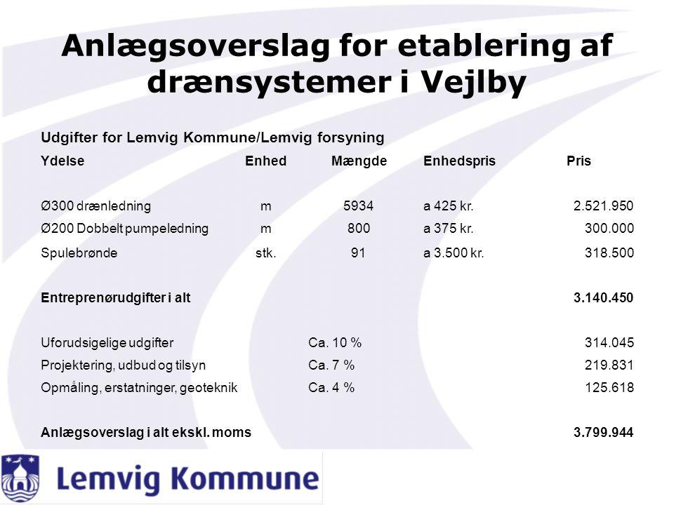 Anlægsoverslag for etablering af drænsystemer i Vejlby