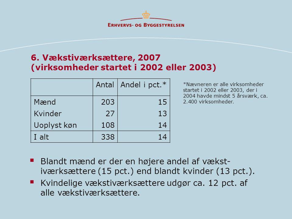 6. Vækstiværksættere, 2007 (virksomheder startet i 2002 eller 2003)