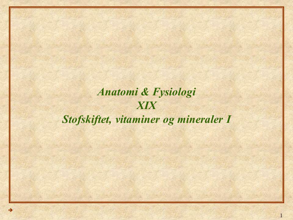 Anatomi & Fysiologi XIX Stofskiftet, vitaminer og mineraler I