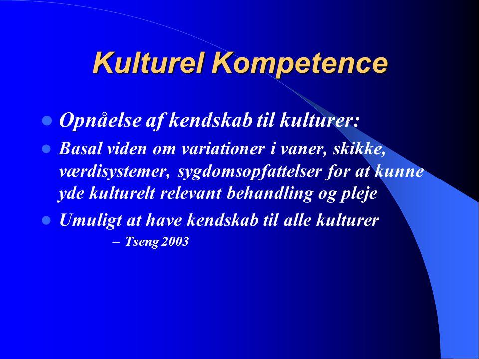 Kulturel Kompetence Opnåelse af kendskab til kulturer: