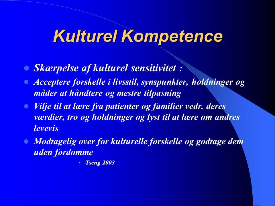 Kulturel Kompetence Skærpelse af kulturel sensitivitet :