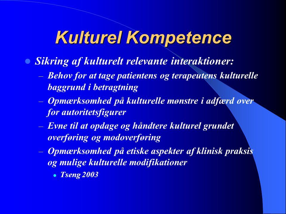 Kulturel Kompetence Sikring af kulturelt relevante interaktioner: