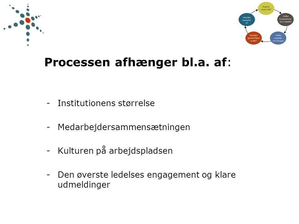 Processen afhænger bl.a. af: