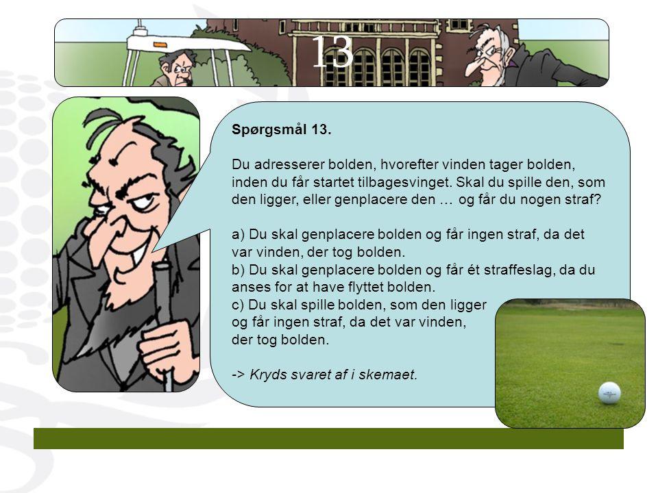 13 Spørgsmål 13.