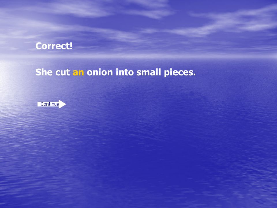 She cut an onion into small pieces.