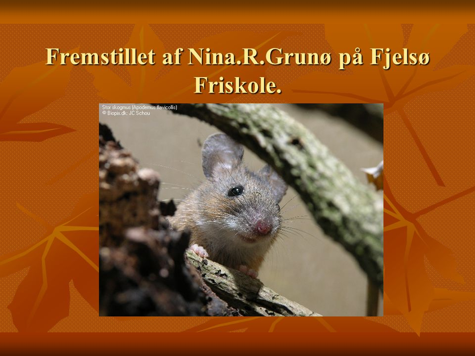 Fremstillet af Nina.R.Grunø på Fjelsø Friskole.
