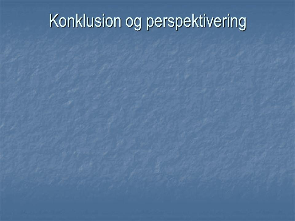 Konklusion og perspektivering