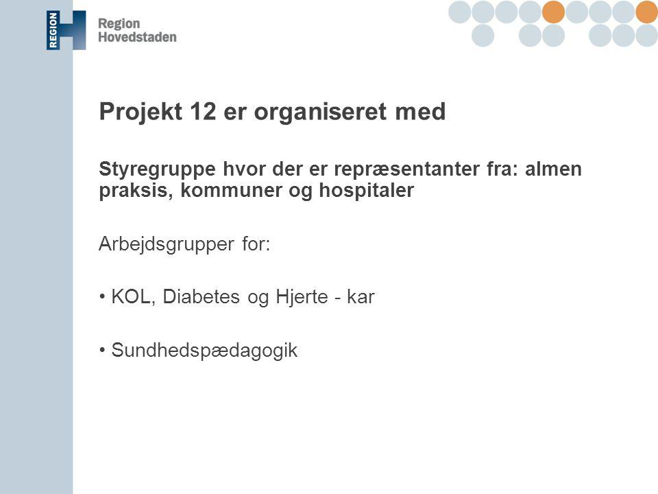 Projekt 12 er organiseret med
