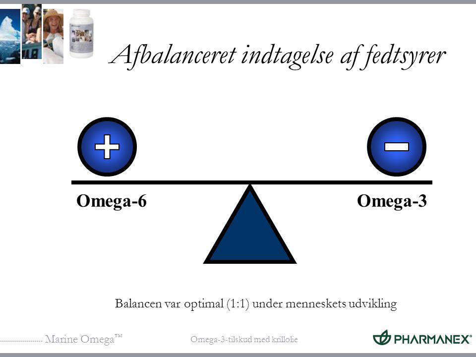 Afbalanceret indtagelse af fedtsyrer