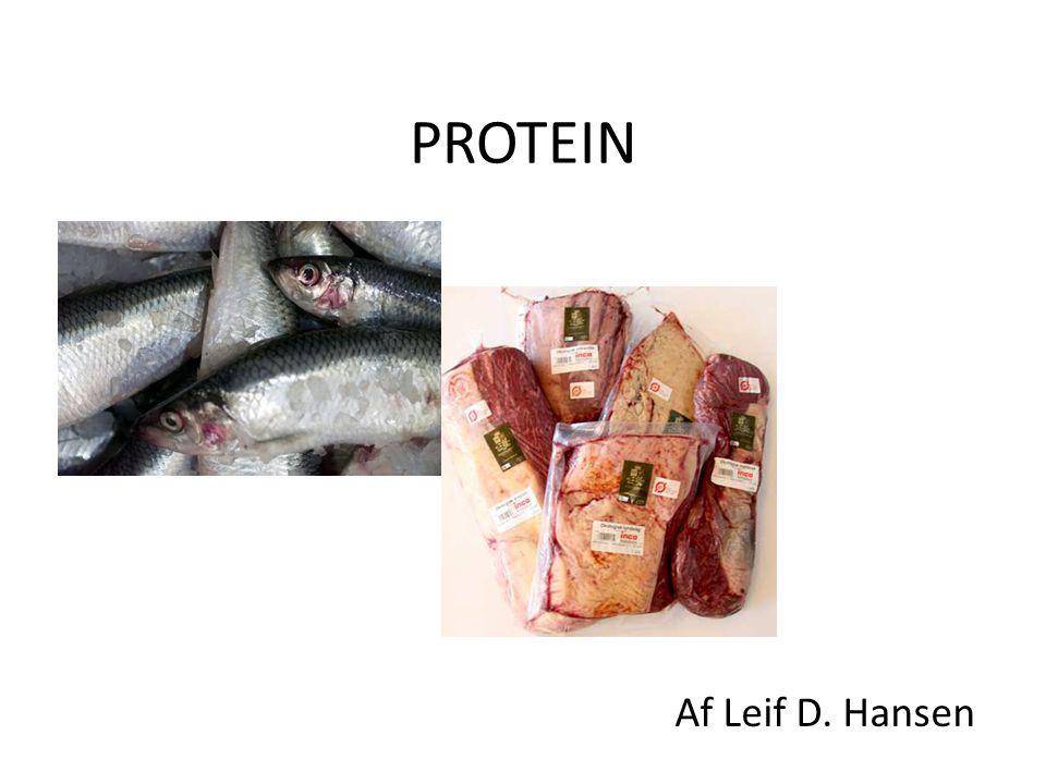 PROTEIN Af Leif D. Hansen