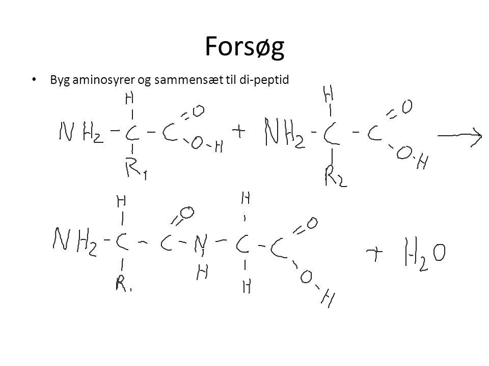 Forsøg Byg aminosyrer og sammensæt til di-peptid