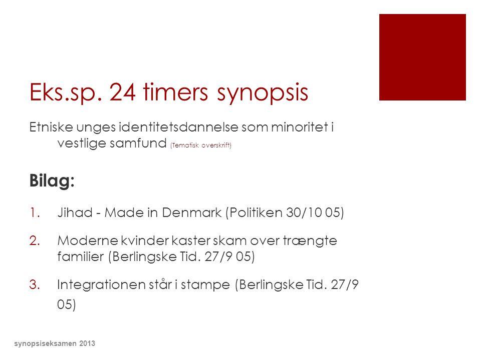Eks.sp. 24 timers synopsis Bilag: