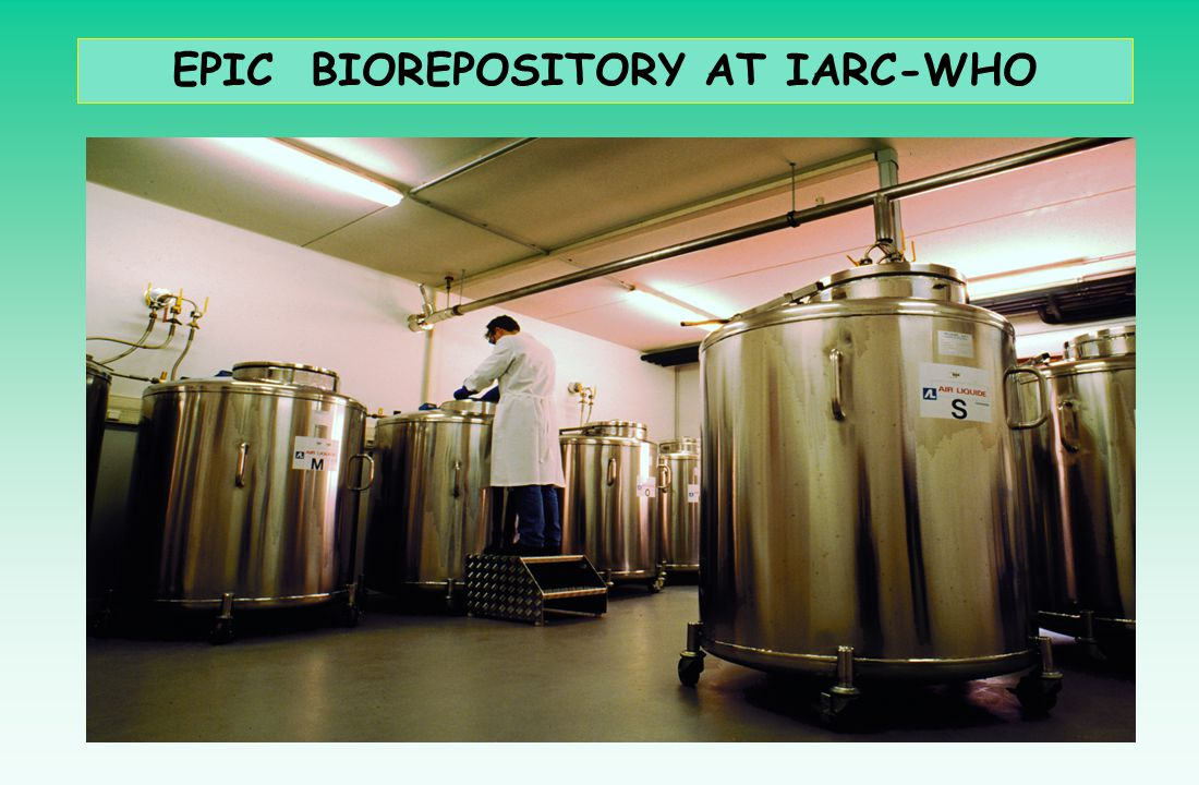 EPIC BIOREPOSITORY AT IARC-WHO
