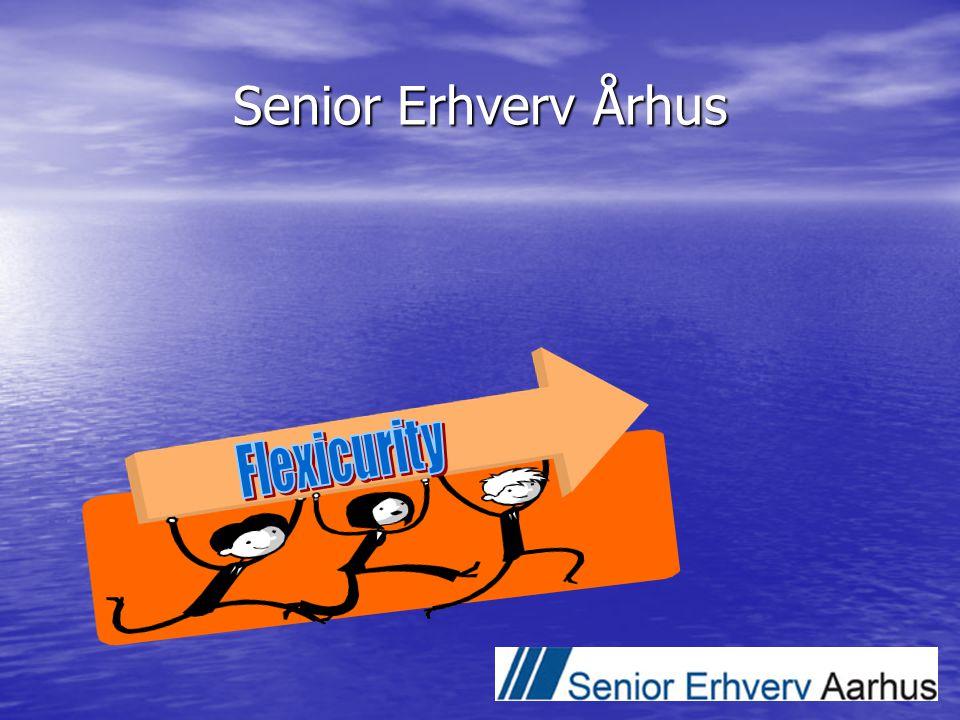 Senior Erhverv Århus Flexicurity