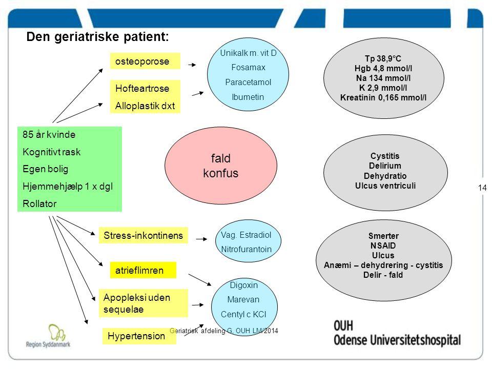 Den geriatriske patient: