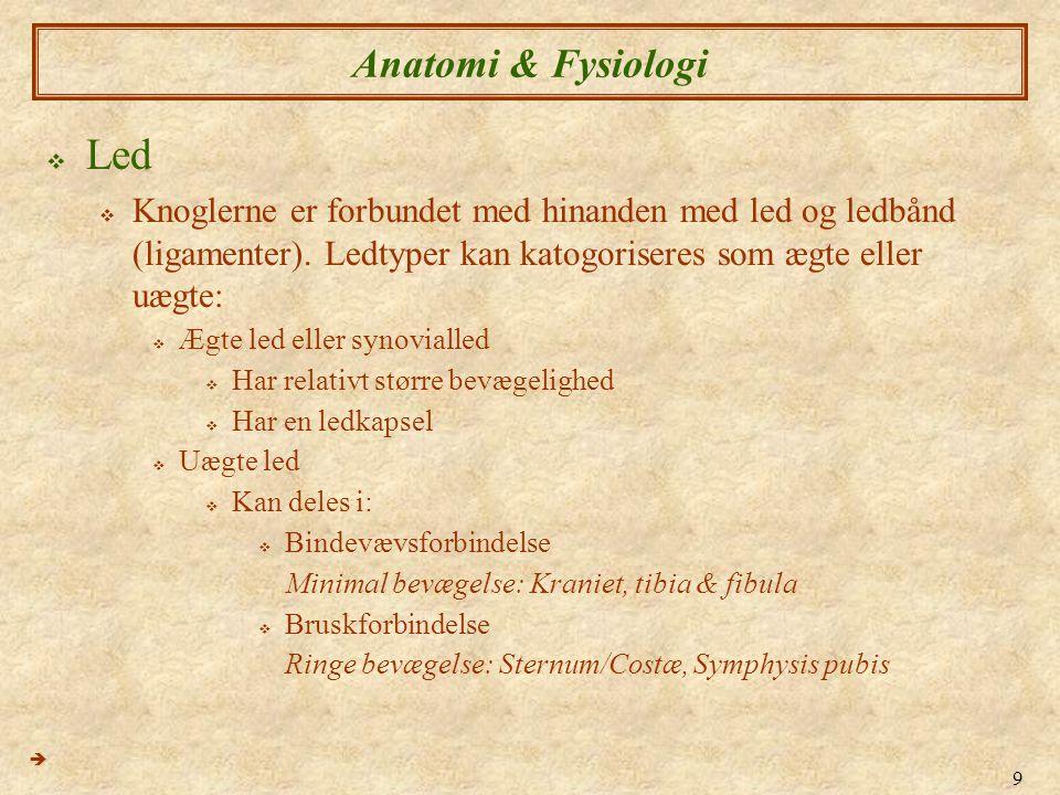 Led Anatomi & Fysiologi