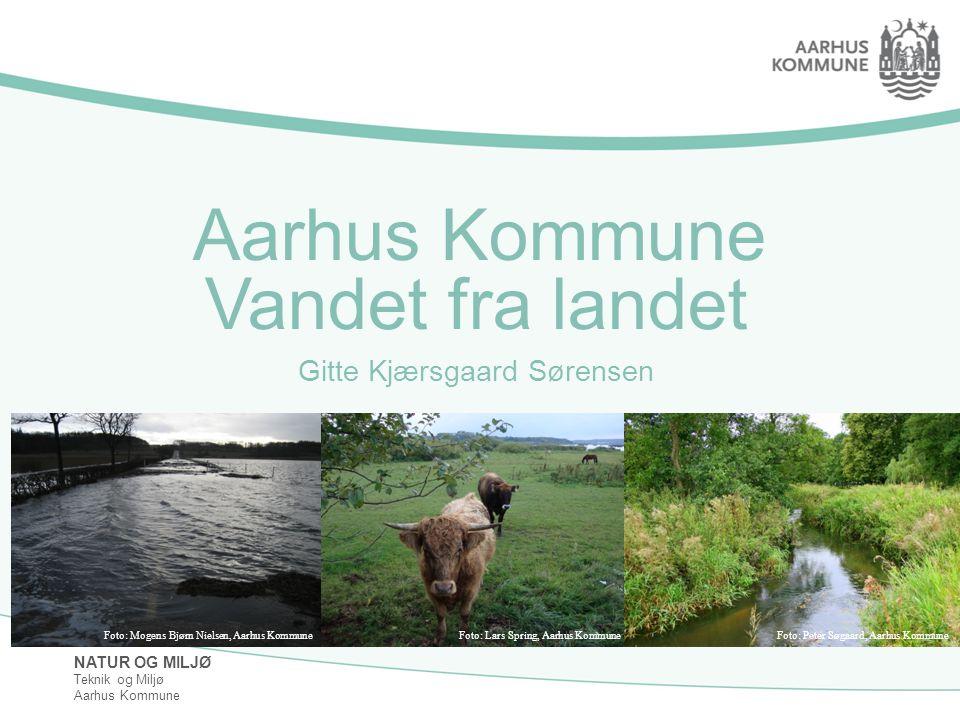 Vandet fra landet Gitte Kjærsgaard Sørensen