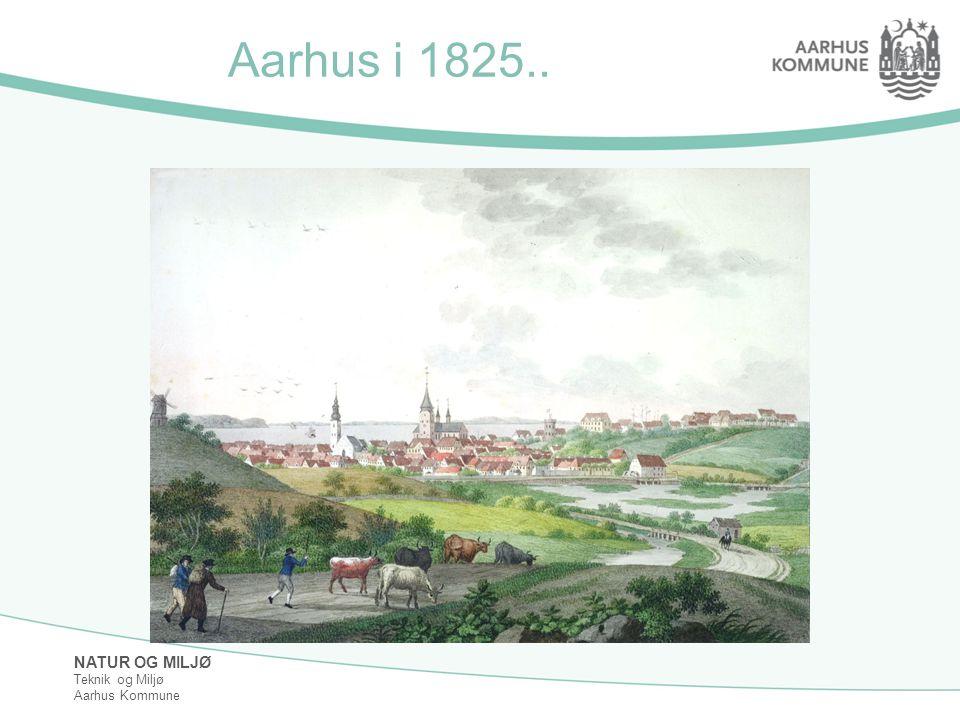 Aarhus i 1825..