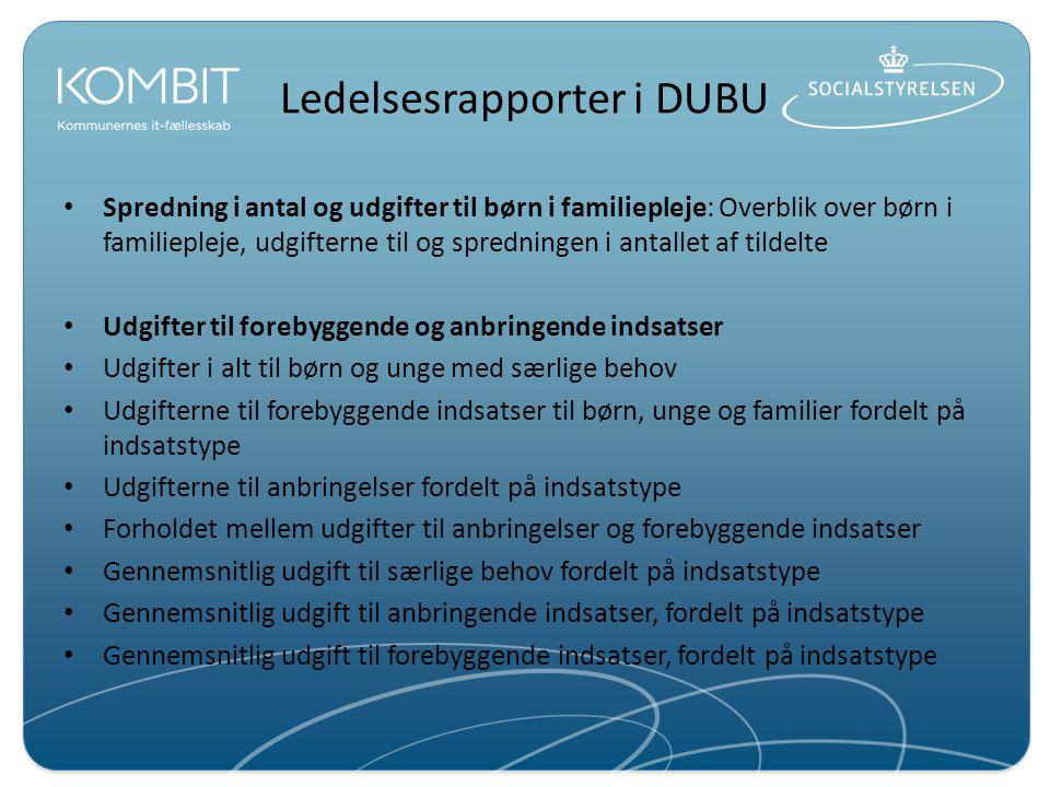 Ledelsesrapporter i DUBU