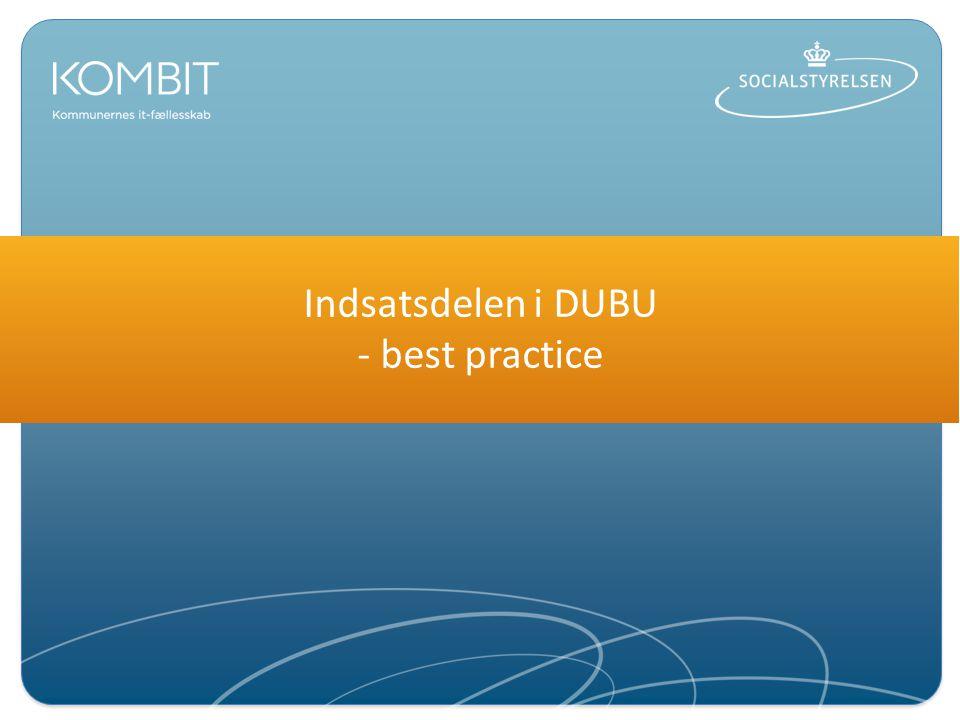 Indsatsdelen i DUBU - best practice