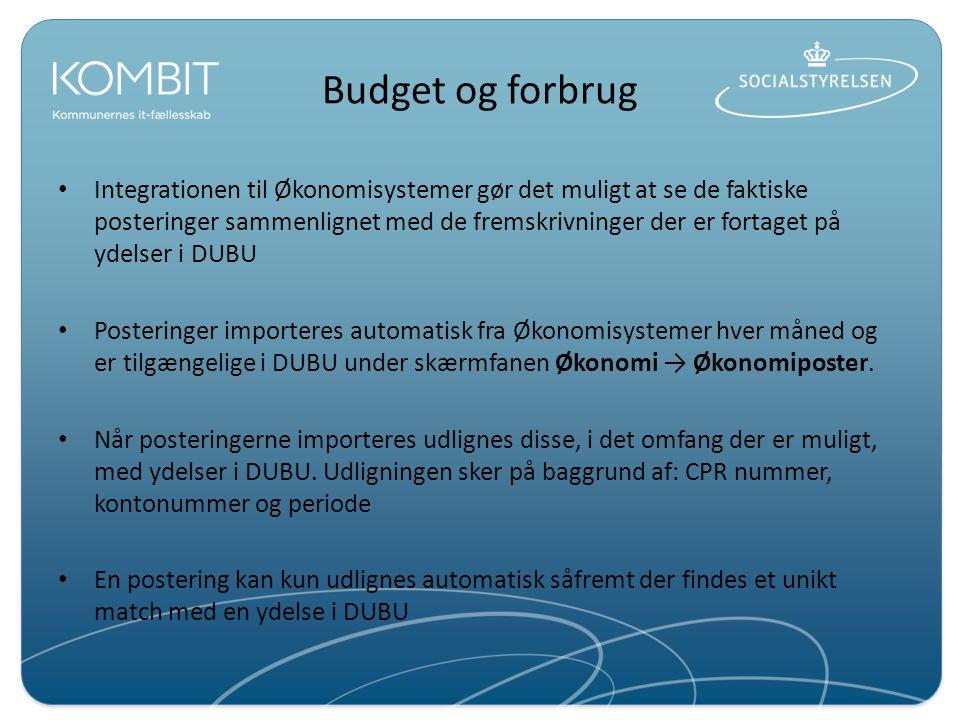 Budget og forbrug