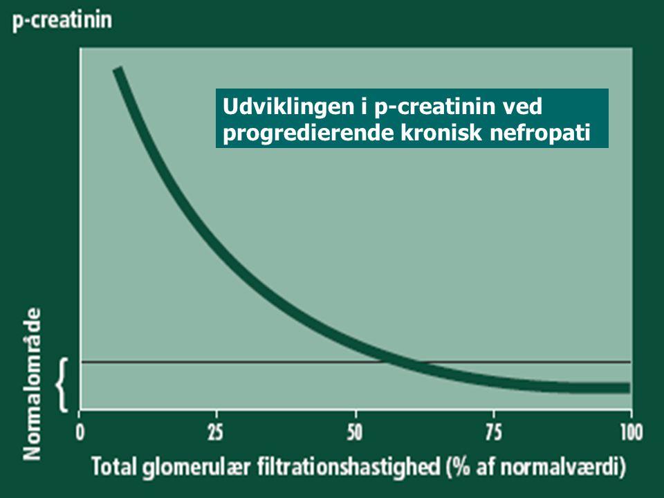 Udviklingen i p-creatinin ved