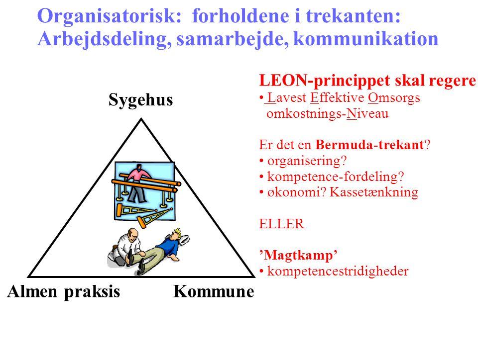 Organisatorisk: forholdene i trekanten: