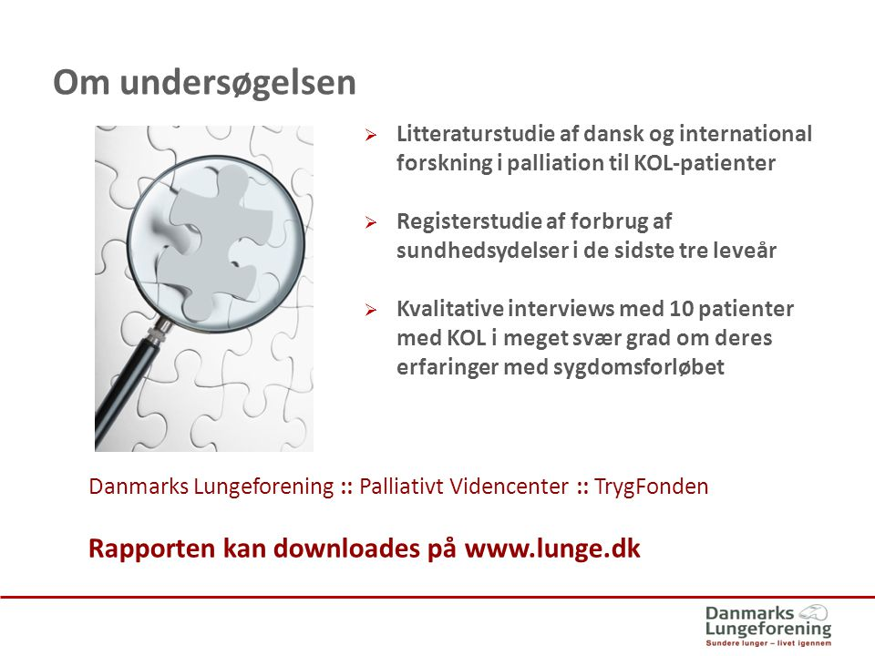 Om undersøgelsen Rapporten kan downloades på www.lunge.dk