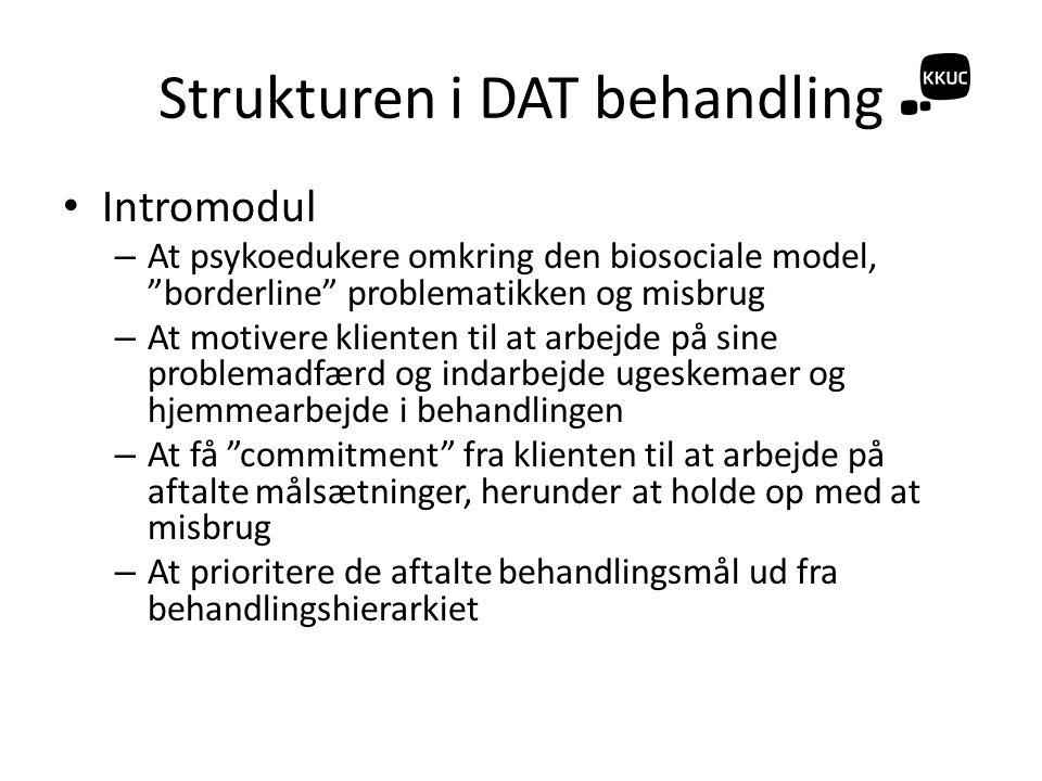Strukturen i DAT behandling