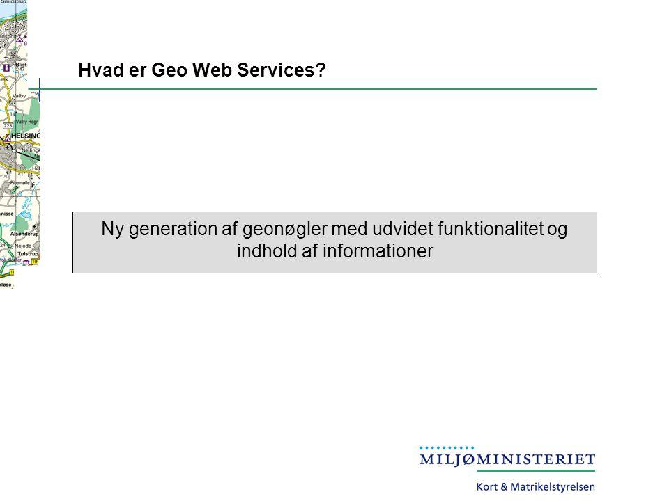 Hvad er Geo Web Services