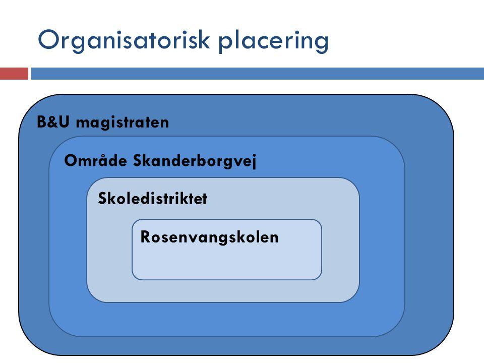Organisatorisk placering