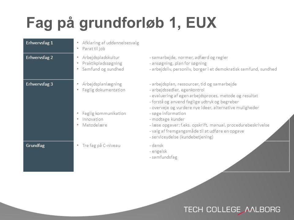 Fag på grundforløb 1, EUX Erhvervsfag 1 Afklaring af uddannelsesvalg