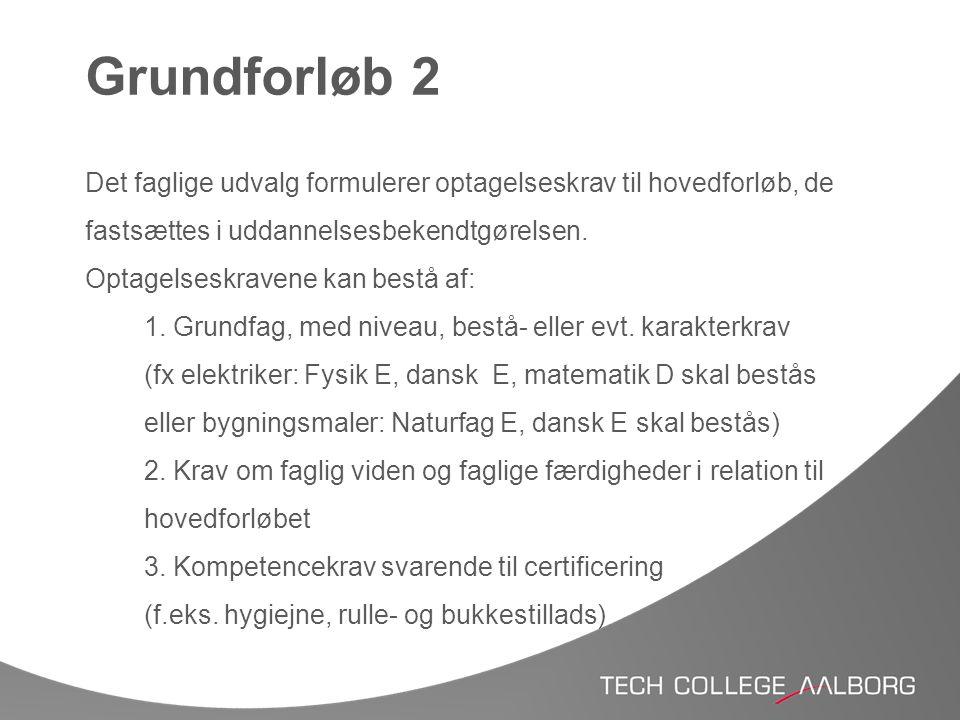 Grundforløb 2 Det faglige udvalg formulerer optagelseskrav til hovedforløb, de fastsættes i uddannelsesbekendtgørelsen.