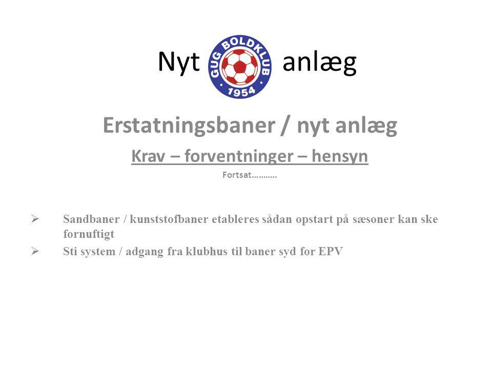 Erstatningsbaner / nyt anlæg Krav – forventninger – hensyn